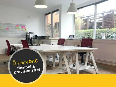 Schreibtischplätze in netter Bürogemeinschaft im Prenzlauer Berg - All-in-Miete