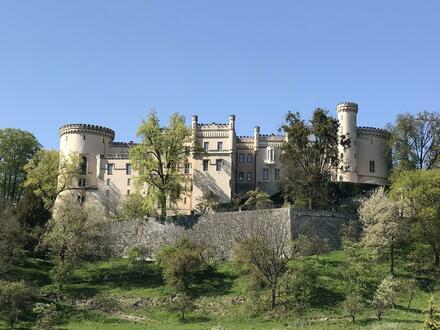 Grundstück mit Schlossblick