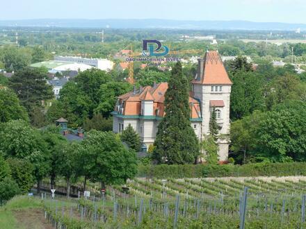 """Luxuriöses Schloss """"Villa Weinfried"""" (Provisionsfrei von Eigentümer)"""