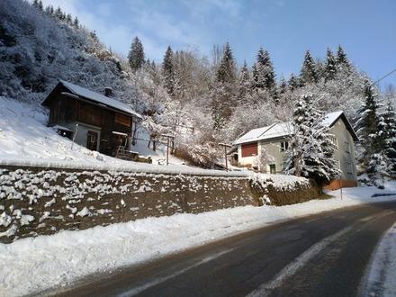 Hüttenberg Kärnten Wald Grundstücke Haus