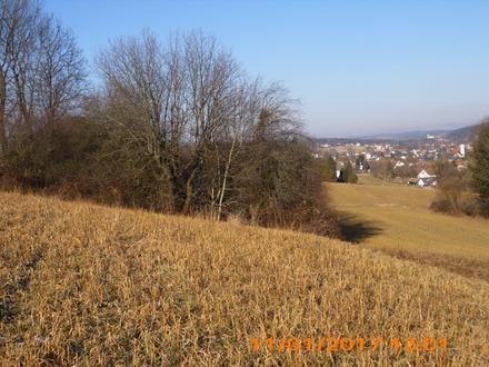 Investorengrundstück in der Thermenregion Stegersbach