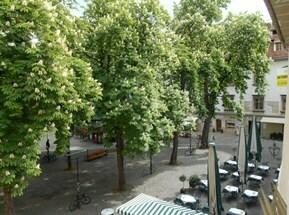 Büro FÄRBER 190m² 6Räume+Empfang+TeeKü Altbau in der Altstadt unbefristet !