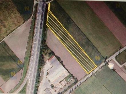 St. Pölten Nord, S33 - B1, Acker zu verpachten