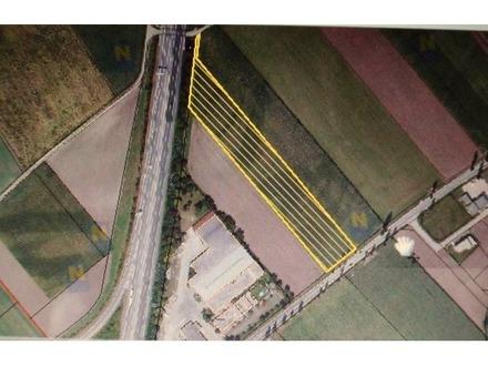 LW-Grundstück für Gärtnerei an der S-33 Abfahrt