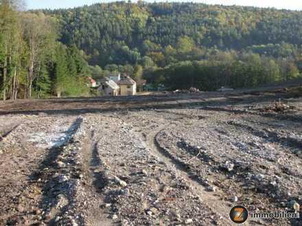 Nähe Bad Tatzmannsdorf: Großes Grundstück in ruhiger Lage
