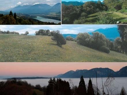 Alleinlage Wörthersee SÜD: Bauland/Landsitz/Arrondiert - grosse Traumfläche ohne Nachbarn