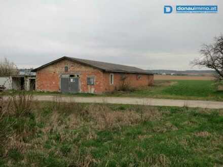 3580 Horn: Bauland mit Lagerhalle
