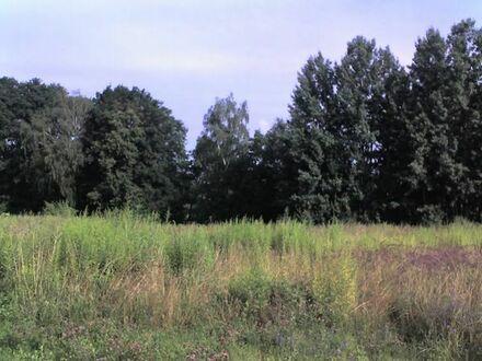 o. Prov. 1030 m2 Baugrundstck Nr.2 Bederwitz / Rodewitz
