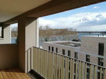 Exkl. 3,5 ZKB Penthouse in Speyer direkt am Rhein ab 1.10.2019