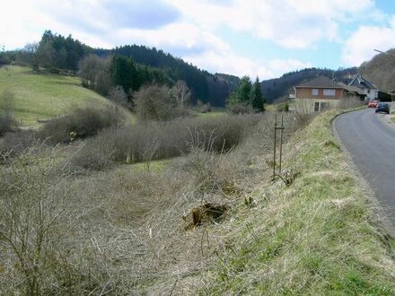 Baugrundstück 2.448 m² in 53518 Adenau am Nürburgring, Eifel