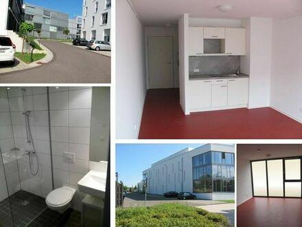 Trier: 1-Zimmer-Appartement in Uni-Nähe an Studenten zu vermieten