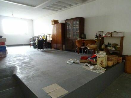 Halle als Ausstellungsraum / Showroom / Galerie mit Büro und WC in 67061 Ludwigshafen