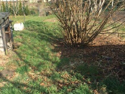 Großes Gartengrünstück in 68642 Bürstadt / frei ab 01.01.2019