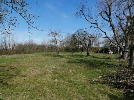 Vermietung: Grundstück / Schrebergarten 3000qm in Prünst-Dechendorf westliche von Schwabach