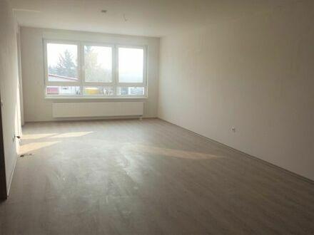 2,5 - Zimmer Wohnung zu vermieten