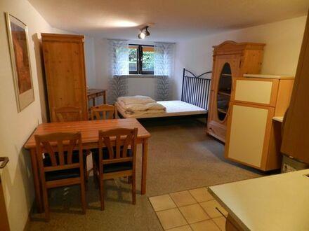 Freundliches möbliertes Souterrain-Apartment