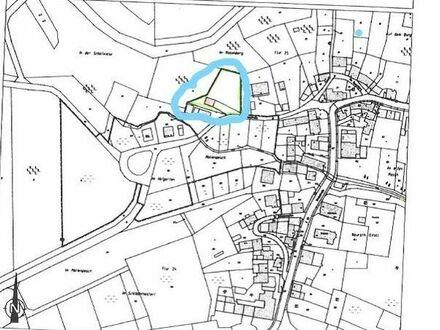 Baugrundstück Grundstück in Naurath, Nähe Föhren Schweich zu verkaufen