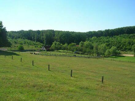 Naturhof in Südungarn