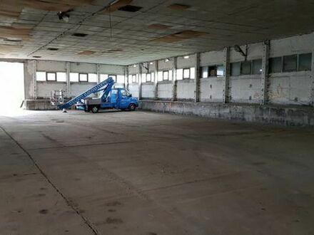 Winterlager, Hallenplatz für Boote und Caravan in 39317 Parey zu vermieten