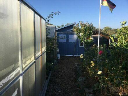 Schöner Kleingarten zu verkaufen