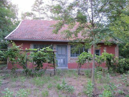 Ungarisches Bauernhaus