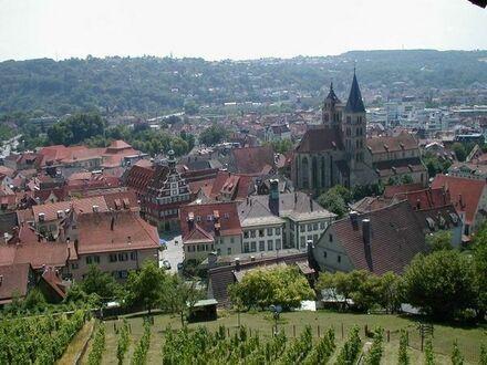 Esslingen Stadtmitte - sehr hübsche, großzügige 3 1/2 Zimmerwohnung