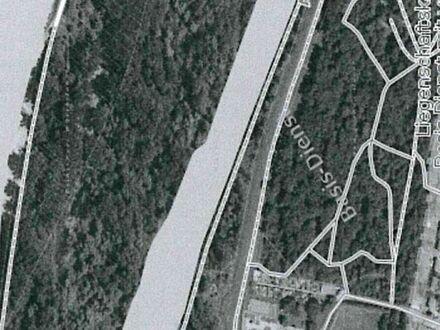 1608qm Waldgrundstück in Altrip