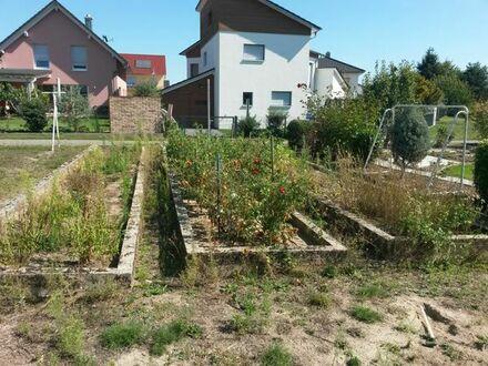 Garten zu vermieten