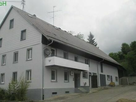 Überaus attraktives, kernsaniertes Bauernhaus mit großer Halle in Pfullendorf-Schwäblishausen