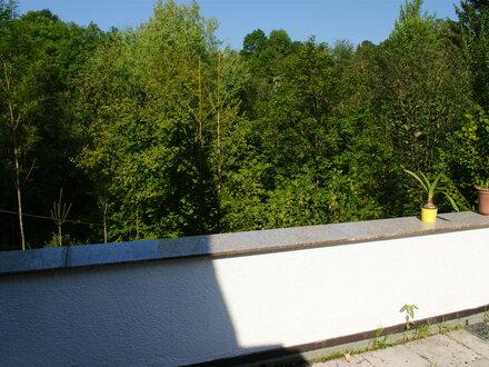 Große Wohnung in Ditzingen - stadtnah und im Grünen