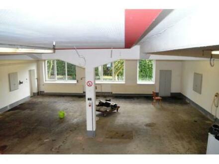 Ausstellungsfläche/ Showroom in Hamm zu verpachten.