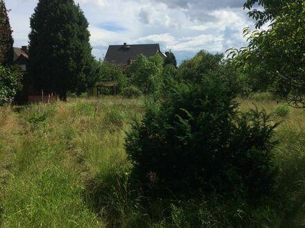 Teilerschlossenes Grundstück in der Muskauer Heide