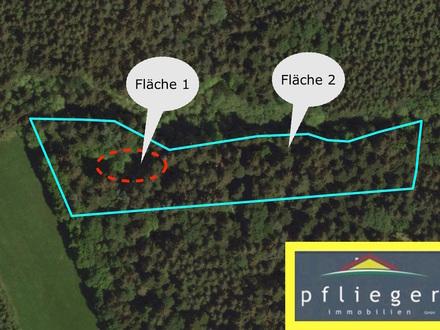 0,8 ha Waldfläche bei Rathsmannsdorf
