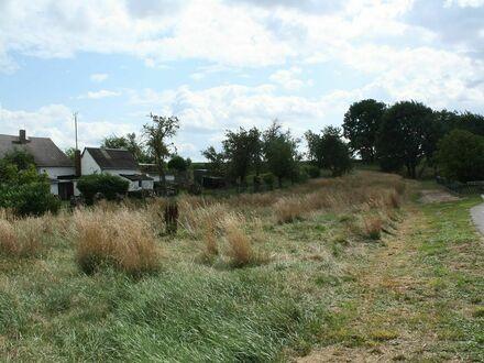 04720 Zschaitz-Ottewig - Sonniges Grundstück freut sich auf Ihr Town & Country Haus und das Lachen Ihrer Kinder