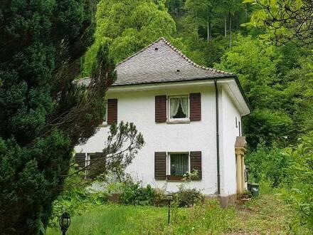 zu VERKAUFEN in FR Günterstal Grd. mit Villa renovierungsbed.