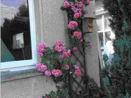 1-2 Familienhaus in Duingen mit Werkstatt, Halle, Doppelgarage und Garten