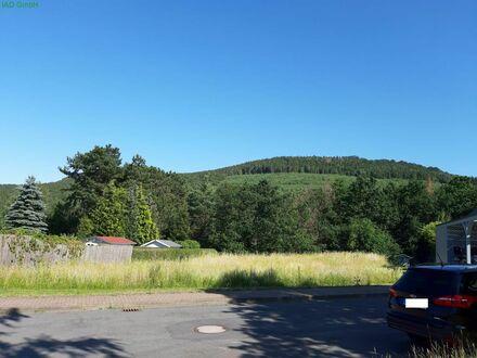 Baugrundstück in Langelsheim - Astfeld