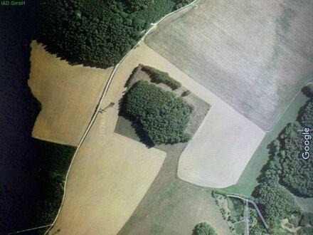 Landwirtschaftliche Nutzfläche östlich von Dresden bei Schönfeld-Weißig