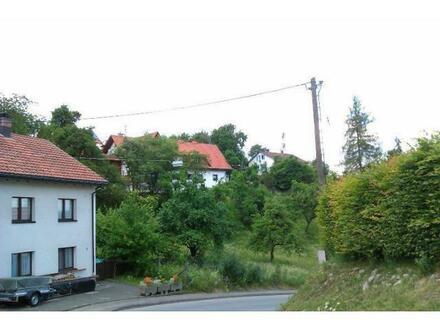 SCHWARZWALD / WUTACHTAL / Baugrundstück in Bonndorf