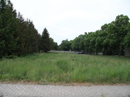04931 Neuburxdorf - Bungalow, EFH mit Satteldach, Stadtvilla - Hier ist jeder Haustyp von Town & Country Haus möglich