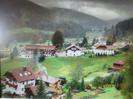 Bauplätze in Bad Wildbad
