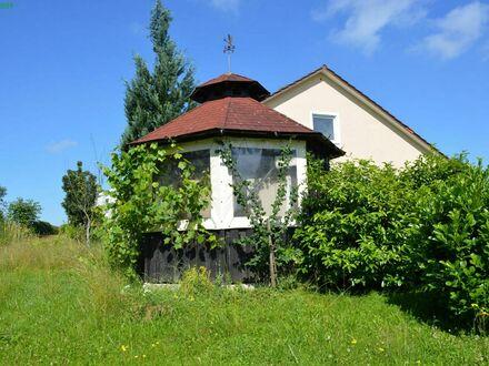 Großzügiges, saniertes Einfamilienhaus mit einem schönen, sonnigen und ruhigen Garten