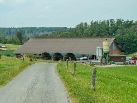 Biomilchhof mit Viehbestand und Anlagevermögen