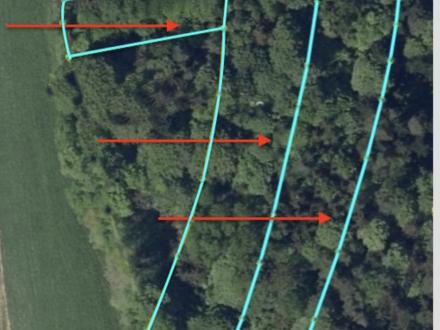 1,32 ha Waldfläche bei Außernzell