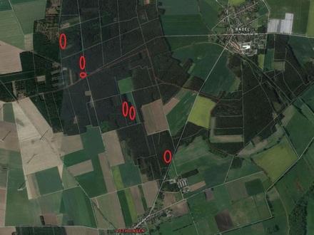 +++landwirtschaftliche Fläche - 6,4 ha Waldfläche bei Zethlingen+++