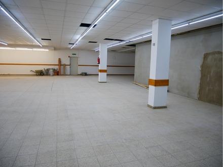 530 m² Gewerbefläche mit vielen Nutzungsmöglichkeiten in 21436 Marschacht zu vermieten