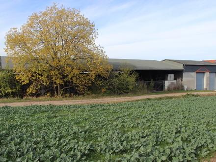 Gewerbeobjekt - Lagerhalle / Schauer mit 2 großen Garagen und ca. 4200 m² Grundstücksfläche