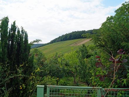 Landwirtschaftliches Grundstück - Baumwiese - in Remshalden-Grunbach gegen Gebot zu verkaufen