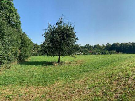 Einmalige Gelegenheit ! Großes Freizeit Grundstück 3718 Quadratmeter - Augsburg-Bärenkeller