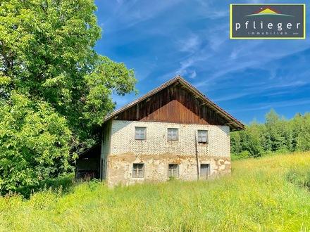 Bauernhaus in Alleinlage in idyllischer Lage mitten im Bayer. Wald
